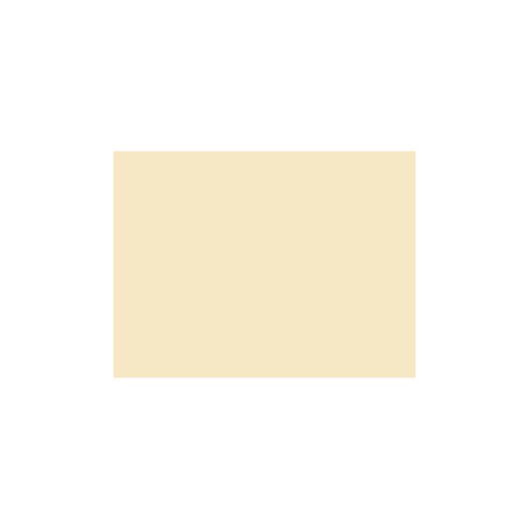 Cartulina 50x65 185g Iris Canson COLOR CARNE